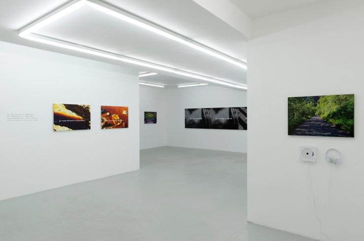 Houellebecq-vue-d-exposition