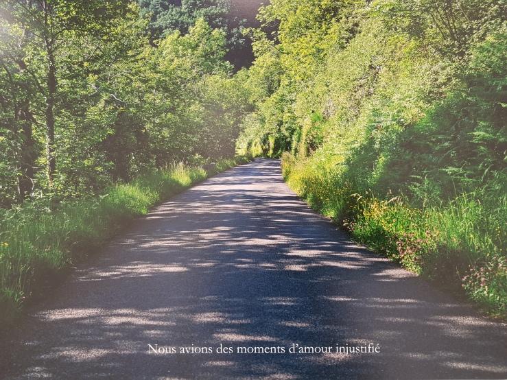 Houellebecq_nous-avions-des-moments-d-amour-injustifie.jpg